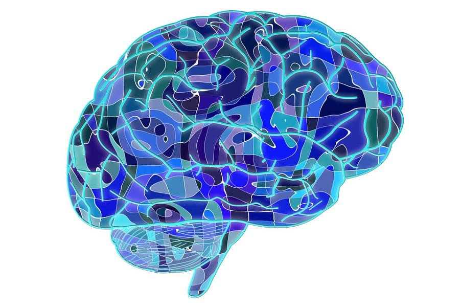 Glutamina y Alzheimer